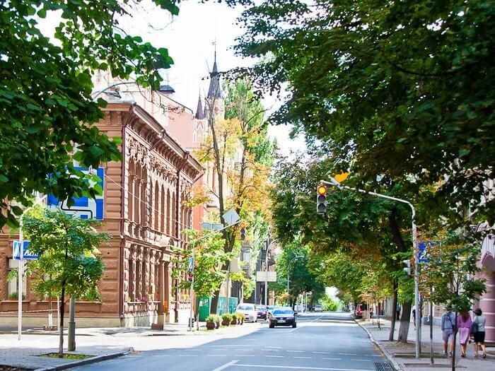 Shovkovychna Street