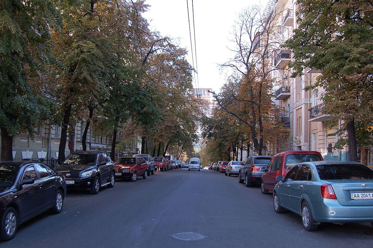 Zankovetska Street
