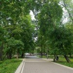 3. The Park of KPI