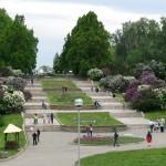 Remains of earth ramparts (Gryshko botanic garden)
