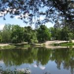 Пуща-Водица