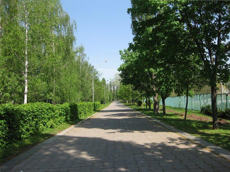 Дорога скорби