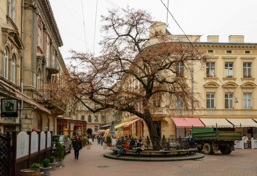 Excursions in Lviv in 2016, travel Crooked Linden